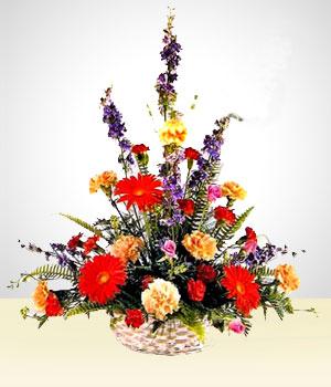 Celestial Claveles Multicolores Arreglos Florales